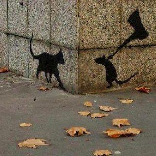 La curiosidad mató al gato por @JgAmago en #ReInventarse